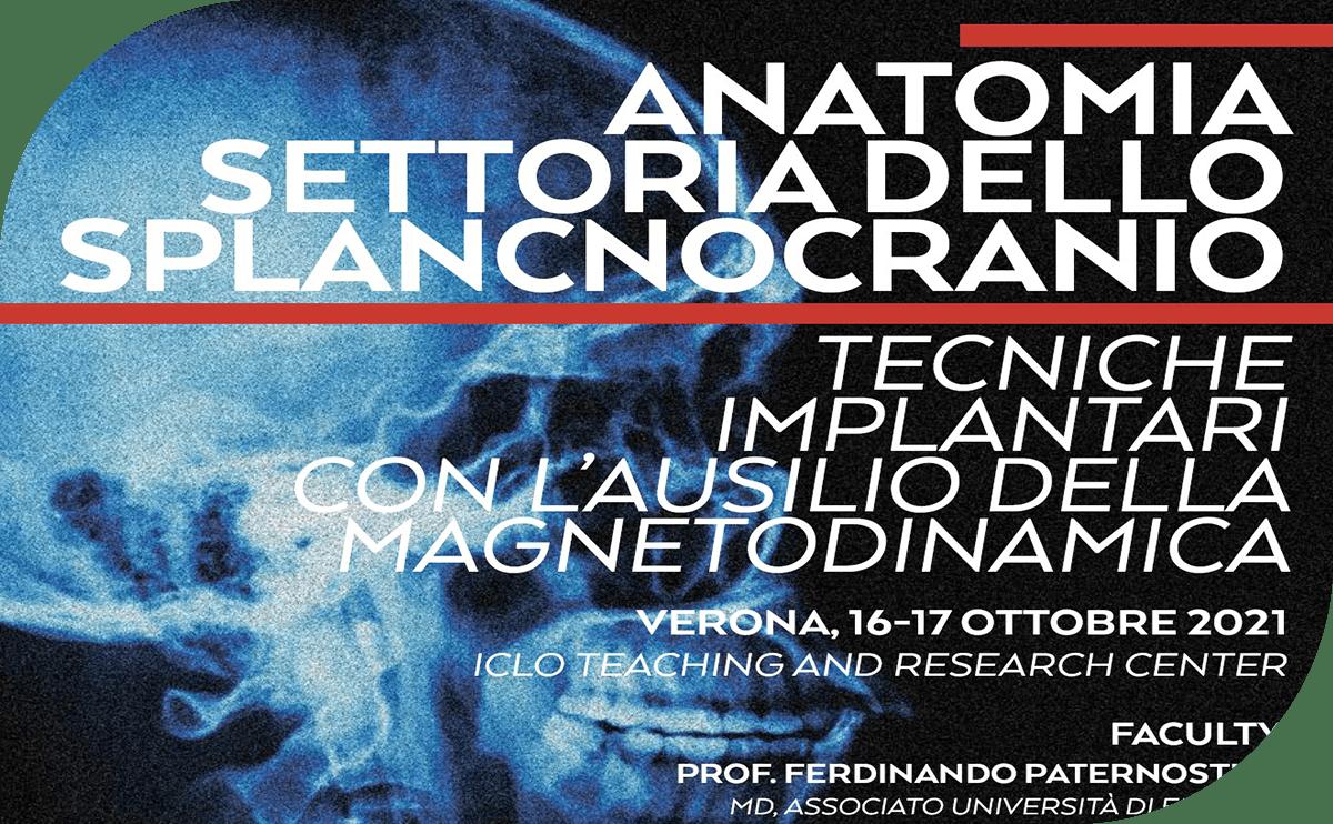 https://www.osseotouch.com/wp-content/uploads/2021/05/Corso-di-Anatomia-Settoria-dello-Splancnocranio-3-min.png